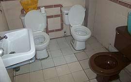 Familia que utiliza o banheiro unida, permanece unida!
